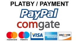 We accept pament with Paypal