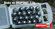 Dropshot Weight - Lead balls 20 pcs 2,2g
