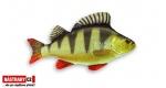 Fish pillow PERCH - lenght 50 cm